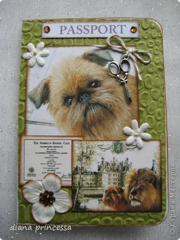 """обложка на паспорт""""собачки-брюссельский грифон"""" фото 1"""