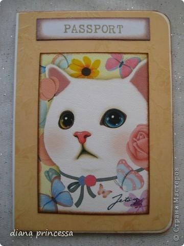 """обложка на паспорт""""Кошечки"""" фото 3"""