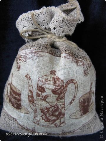 Кофейное деревце. фото 5