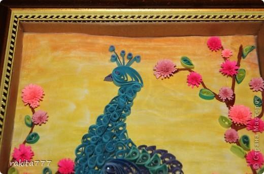 Это моя самая первая работа, которая меня вдохновила собирать картины в стиле квиллинг. Случайно обнаружила МК на Стране Мастеров от Ольги Ольшак http://stranamasterov.ru/node/87998?tid=451%2C587. Я и мои родители остались довольны результатом))) фото 4
