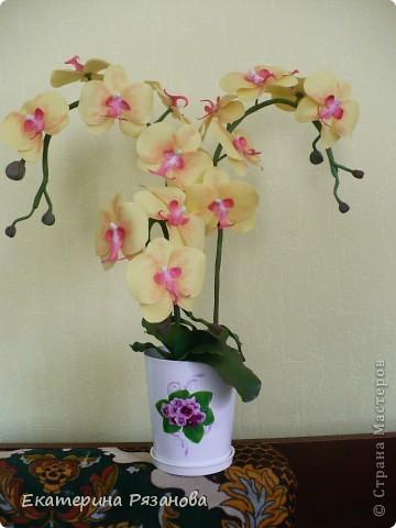 Привет ВСЕМ!!! У меня опять орхидея, уж больно понравилось мне ее лепить. И еще одну заказали. Так что эта неделя мне обеспечена....Столько цветов налепила (подрасчувствовалась), а потом сижу и думаю, куда же я их девать буду, вот и пришлось аж три ветки делать, но мне очень нравится. Такая яркая получилась, прям солнышко. фото 2