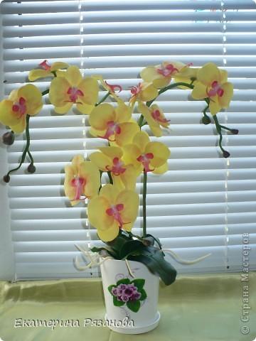 Привет ВСЕМ!!! У меня опять орхидея, уж больно понравилось мне ее лепить. И еще одну заказали. Так что эта неделя мне обеспечена....Столько цветов налепила (подрасчувствовалась), а потом сижу и думаю, куда же я их девать буду, вот и пришлось аж три ветки делать, но мне очень нравится. Такая яркая получилась, прям солнышко. фото 1