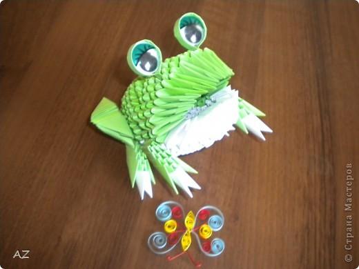 лягунюшка фото 3