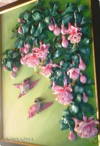 Фуксии и колибри фото 2
