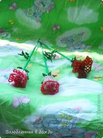 Эти розочки, были сделаны 7 лет назад и стали первым опытом, в изготовлениии цветов: фото 2