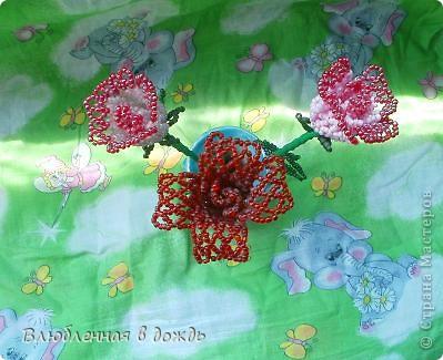 Эти розочки, были сделаны 7 лет назад и стали первым опытом, в изготовлениии цветов: фото 5