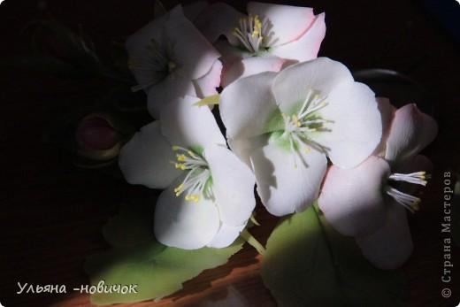Яблоня и лилия цветут столько- сколько захотите, потому что они из фарфора. Это заколка-автомат, заказали мне - ох и мучалась, в муках рождалась... лепесточки без катеров делала, раскатывала каждый, отпечатывала на самодельном молде цветка яблони. Тонировала пастелью по сырому фарфору, все веточки обкатаны. фото 6