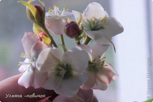 Яблоня и лилия цветут столько- сколько захотите, потому что они из фарфора. Это заколка-автомат, заказали мне - ох и мучалась, в муках рождалась... лепесточки без катеров делала, раскатывала каждый, отпечатывала на самодельном молде цветка яблони. Тонировала пастелью по сырому фарфору, все веточки обкатаны. фото 7