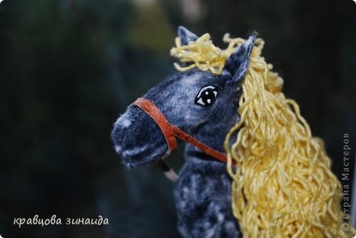 Добрый  день , всем  мастерицам,  вот  и  у  меня  появилась  лошадка ( этими  животными  можно  любоваться  безконца ) у  ИРОЧКИ  - феи  их  много,  а  у  меня  одна,  получилась  по - моему  неплохо. фото 7
