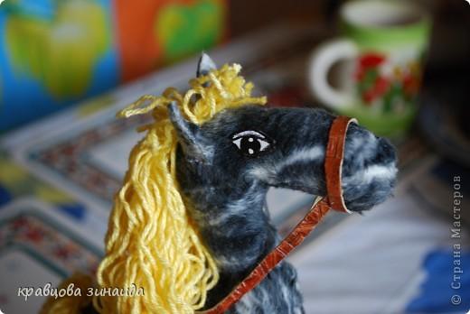 Добрый  день , всем  мастерицам,  вот  и  у  меня  появилась  лошадка ( этими  животными  можно  любоваться  безконца ) у  ИРОЧКИ  - феи  их  много,  а  у  меня  одна,  получилась  по - моему  неплохо. фото 5