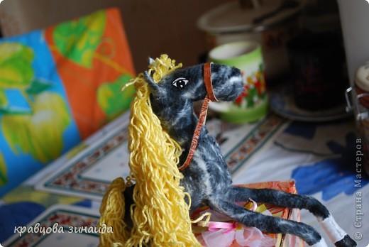 Добрый  день , всем  мастерицам,  вот  и  у  меня  появилась  лошадка ( этими  животными  можно  любоваться  безконца ) у  ИРОЧКИ  - феи  их  много,  а  у  меня  одна,  получилась  по - моему  неплохо. фото 6