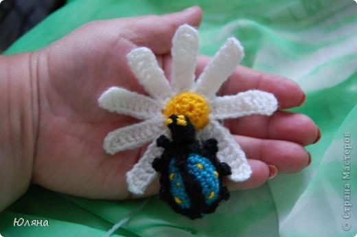 я нашла себе жука на большой ромашке фото 1