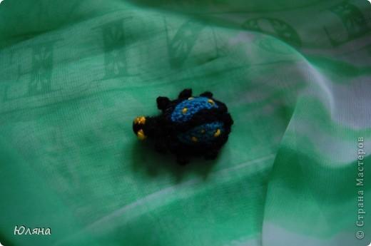 я нашла себе жука на большой ромашке фото 2
