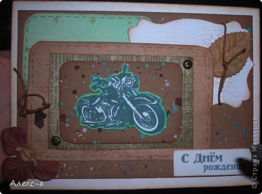 коричневый и бирюзовый) для байкера) фото 1