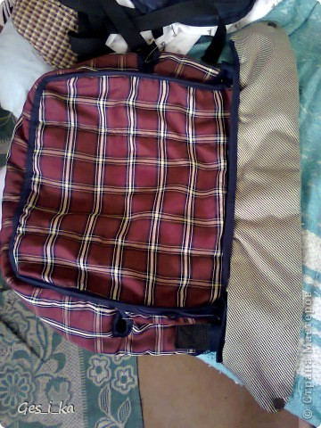 из той же коляски ( http://stranamasterov.ru/node/392914)сшита сумка для переноса собачат.  фото 2