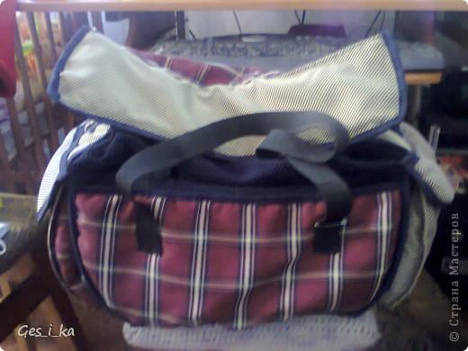 из той же коляски ( http://stranamasterov.ru/node/392914)сшита сумка для переноса собачат.  фото 1