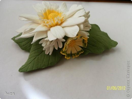 Я сейчас учусь искусству лепки цветов из полимерной глины. Вот подруга и попросила меня восстановить ее любимую заколочку. Осталась основа, но выбросить она ее не решилась, наверно ждала такого случая. И вот он настал. фото 2