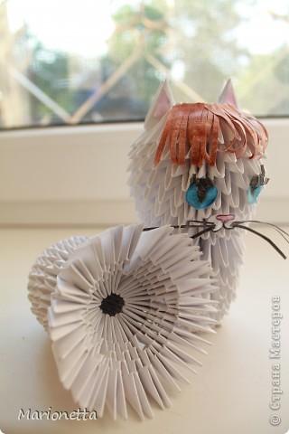 Кошка. Модульное оригами фото 1