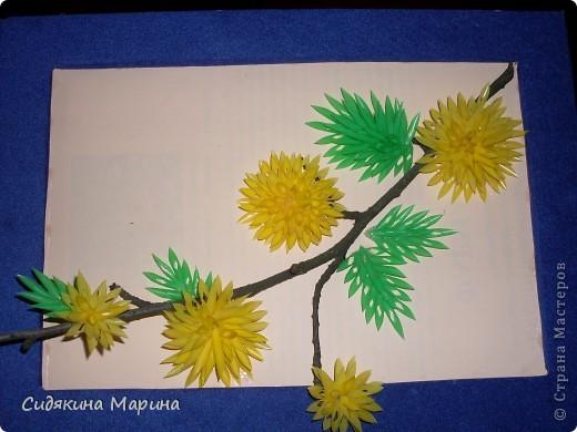 """Работы моих маленьких учеников. Нарезанные трубочки собирают в соцветия на плёнку при помощи клея """"Дракон"""". Таким образом заготавливают детали отдельно (листочки , цветочки), после высыхания детали легко снимаются с плёнки и из них собирают панно. Так же ими можно украсить что-либо (рамку для фото, зеркало, шкатулку, вазу и т.д.). фото 1"""