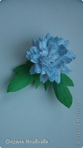 Остались у меня после последней работы белые хризантемки и зеленые,и я сделала розы по мк Астория  http://asti-n.ya.ru/replies.xml?item_no=550 фото 7