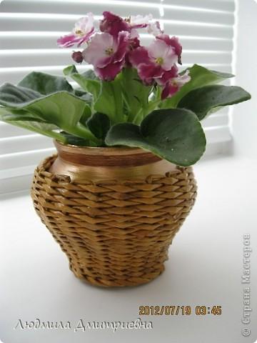 ВСЕМ привет!!!!!!!!! Отбросила вчера свою лень и сплела такую вазу , видела  в журнале, там она из каких-то листьев сплетена. Водная морилка мокко и клен. Рисунок не соблюдала, наугад , что бы была пестрой. Диаметр 10см, высота 36 см. А второй горшочек оплела (тоже идея из журнала), сам горшок покрасила золотистой краской, морилка  клен фото 3