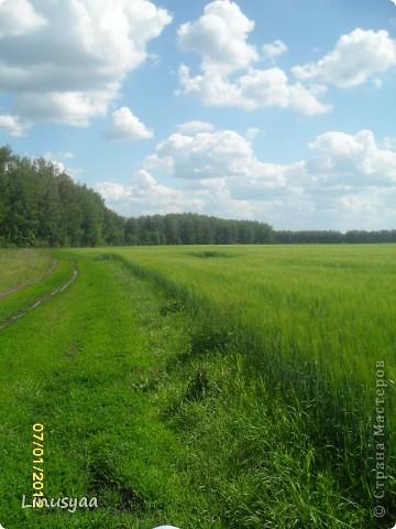 Русская природа фото 6