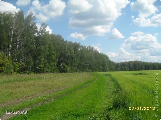 Русская природа фото 8
