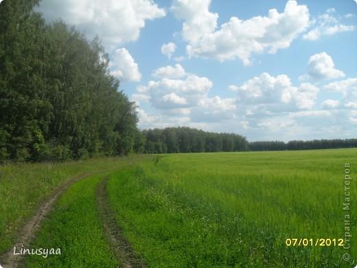 Русская природа фото 9