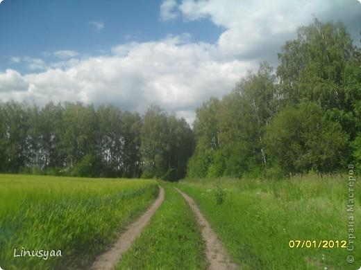 Русская природа фото 12