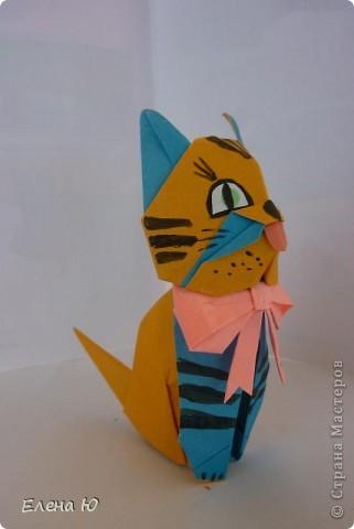 Котенок Гвинта (Джунта) фото 2