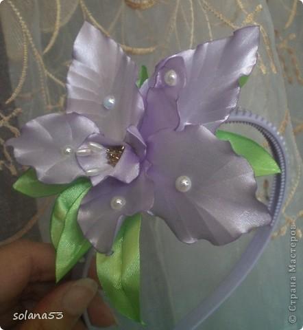 Новый цветочек фото 1