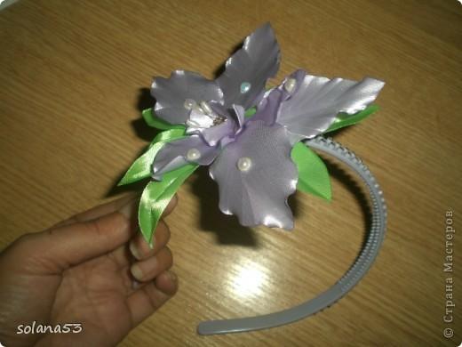 Новый цветочек фото 4
