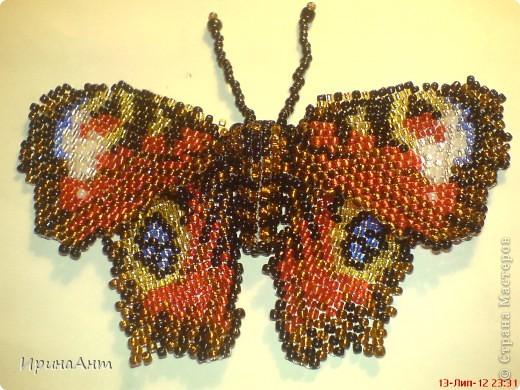 За первой бабочкой на одном вдохновение сплела вторую, и вот за неделю нашла время выложить свою роботу. фото 1
