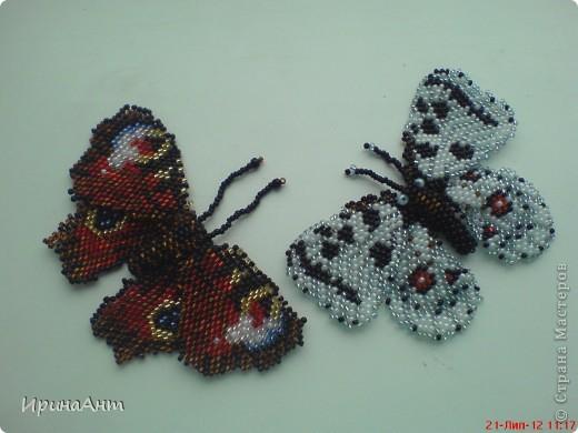 За первой бабочкой на одном вдохновение сплела вторую, и вот за неделю нашла время выложить свою роботу. фото 3