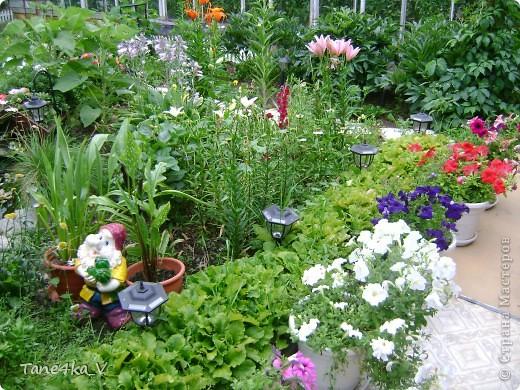 Вот такая добрая Баба Яга по имени Марфа приветствует Вас в нашем саду! В создании этой прекрасной барышни лично я, к сожалению, не участвовала :) Сделала ее моя мама, а моя бабушка была замечена в создании аксессуаров для Марфуши :)  фото 10