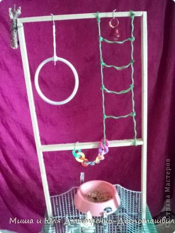 Сегодня мы Вам покажем как быстро и просто сделать игровую площадку для попугайчика.  Вот, собственно и она. Как сразу видно - ничего сложного, а сколько удовольствия для птицы!  Сбиваем вместе 4 реечки из дерева неопасного для птички (плодового, хвоя). Низ нашей буквы П стачиваем так, чтобы ножки можно было хорошенько углубить между прутьями клетки. фото 1