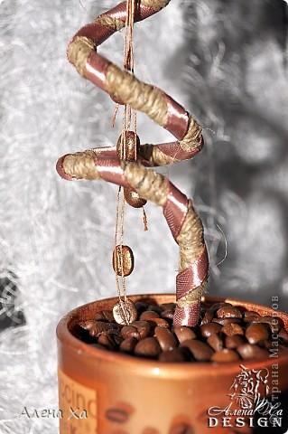 """Добрый вечер, Страна!  Хочу показать свои первые вымученные топиарии. Делала в подарок двум любительницам кофе. Особенно намучилась с приклеиванием зерен, не везде плотно легли. Но именинницам подарки понравились и я довольна )))  Первый назвала """"Кофе. С любовью."""" фото 4"""