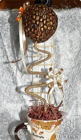 """Добрый вечер, Страна!  Хочу показать свои первые вымученные топиарии. Делала в подарок двум любительницам кофе. Особенно намучилась с приклеиванием зерен, не везде плотно легли. Но именинницам подарки понравились и я довольна )))  Первый назвала """"Кофе. С любовью."""" фото 6"""