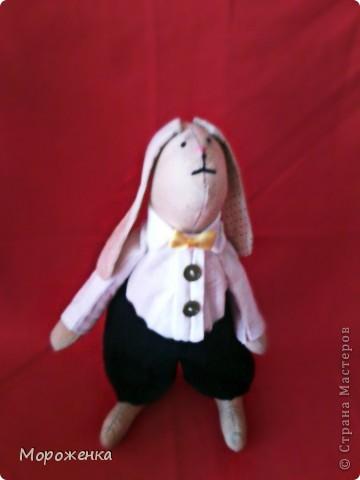 Новая моя игрушечка.Подарок любимой сестре.Имя Семен Иваныч. Рост 26 см. фото 1