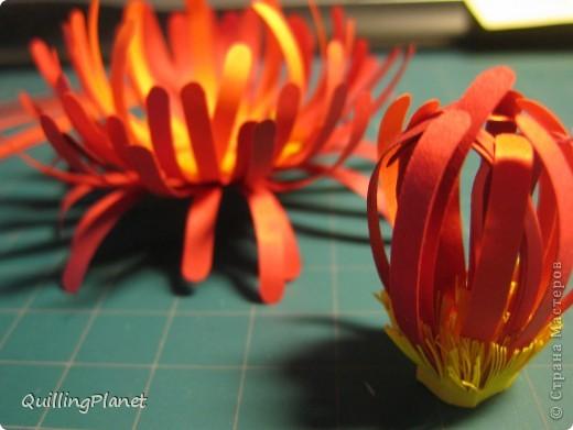 """Продолжение мини-серии красных цветов, вот <a target=""""_blank"""" href=""""/node/384093"""">здесь были маргаритки</a>. Сегодня - хризантема. Делать несложно и интересно собирать цветок. Чем больше схожих оттенков полос для цветка взять - тем интереснее эффект. На внутреннюю часть лучше взять взять оттенки посветлее, чтобы получить эффект подсветки изнутри. Вот и все хитрости. Остальные мелочи - по ходу фотографий. фото 6"""