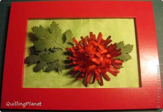 """Продолжение мини-серии красных цветов, вот <a target=""""_blank"""" href=""""/node/384093"""">здесь были маргаритки</a>. Сегодня - хризантема. Делать несложно и интересно собирать цветок. Чем больше схожих оттенков полос для цветка взять - тем интереснее эффект. На внутреннюю часть лучше взять взять оттенки посветлее, чтобы получить эффект подсветки изнутри. Вот и все хитрости. Остальные мелочи - по ходу фотографий. фото 1"""