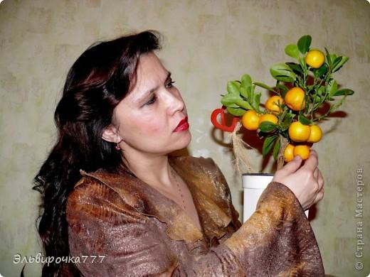 Хочу поделиться красотой и нежностью моих цветущих домочадцев! Все фиалки сортовые, выращенные из листиков фото 15