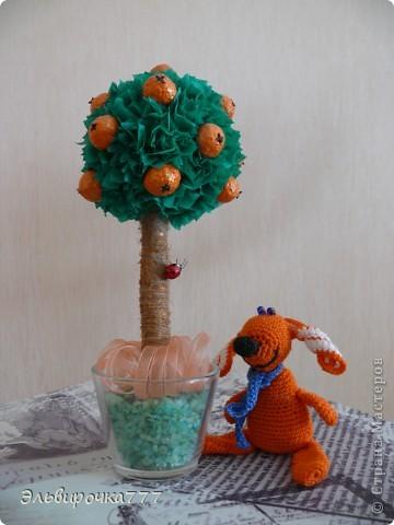 Делала в подарок для дочери! Апельсинчики из самодельной массы папье-маше, ствол обмотан шпагатом и тонирован золотой краской фото 3