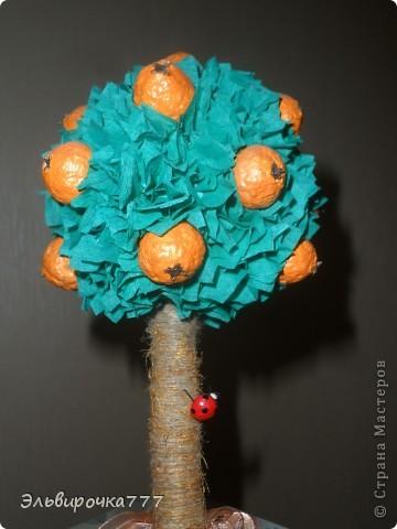 Делала в подарок для дочери! Апельсинчики из самодельной массы папье-маше, ствол обмотан шпагатом и тонирован золотой краской фото 2