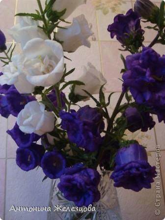 Приглашаю в мой сад. Самый разгар лета, а я начинаю репортаж с весенних цветов. Представляю несколько сортов нарциссов. фото 31