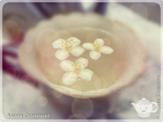 Когда цветет жасмин невозможно оторваться от его прекрасного аромата. Его прекрасные, необычные цветы, со сладковатым, запоминающимся запахом так и манят. Его изысканный аромат чувствуется ся в самом дальнем уголке сада и притягивает пчел, бабочек, жуков и других насекомых. Он дает нам не только аромат, но и пользу. фото 5