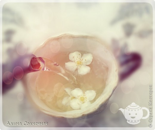 Когда цветет жасмин невозможно оторваться от его прекрасного аромата. Его прекрасные, необычные цветы, со сладковатым, запоминающимся запахом так и манят. Его изысканный аромат чувствуется ся в самом дальнем уголке сада и притягивает пчел, бабочек, жуков и других насекомых. Он дает нам не только аромат, но и пользу. фото 4