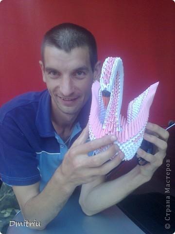 Лебедь Оригами модульное с крыльями фото 1