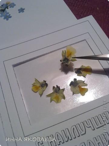 Вот такие необычные, парящие в воздухе, прозрачные композиции из цветов и листиков. С лёгкой руки Марины , назвала это направление в плоскостной флористике  ---  ЛАМИ-АРТ фото 10