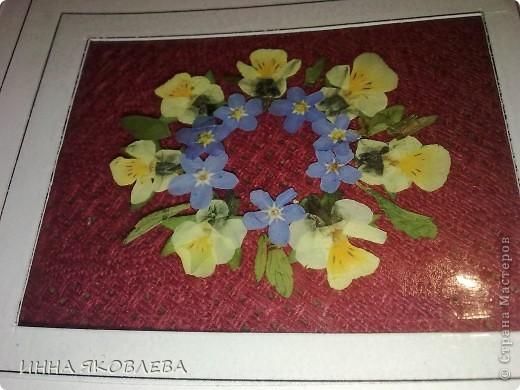 Вот такие необычные, парящие в воздухе, прозрачные композиции из цветов и листиков. С лёгкой руки Марины , назвала это направление в плоскостной флористике  ---  ЛАМИ-АРТ фото 11